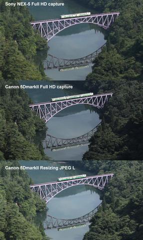 compare01.jpg